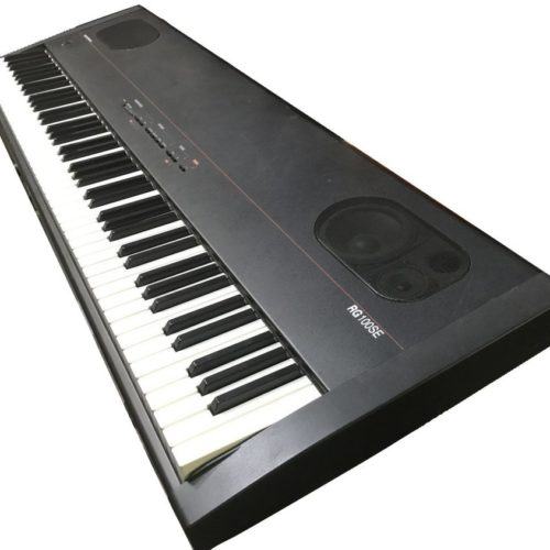 Common Ground Kurzweil RG-100