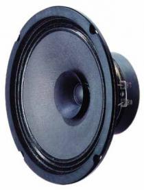 bg20 speaker